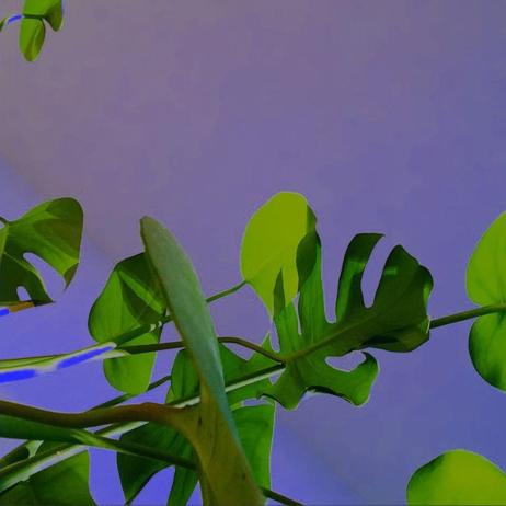 skarmavbild-2016-09-14-kl-13-06-56